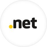 Domínio .net